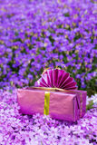 Pink present atop a sea of violet flowers Stock Photo