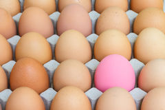 Pink preserved egg and fresh eggs Royalty Free Stock Images