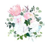 Pink protea, ranunculus, white peony and hydrangea, agonis, euca Royalty Free Stock Images