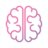 Pink and purple brain. Stock Photo