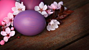Pink and purple Easter eggs with flowers Royalty Free Stock Image