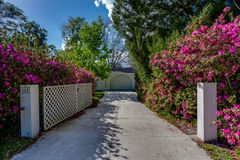 Pink Purple Flower Bushes Lining Long Driveway from Street Welcoming Entrance Landscaping royalty free stock photography
