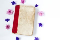 Pink and purple flower and old book on white background . Pink and purple flower and old book on white background Stock Photography