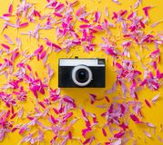 Pink and purple flower petal and camera. On yellow background Stock Photography