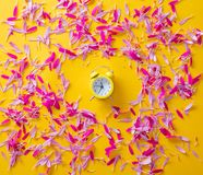 Pink and purple flower petals and little alarm clock Royalty Free Stock Images