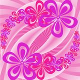 Pink and purple flowers Royalty Free Stock Photography