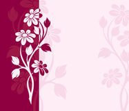 Vector pink and purple flowers card. Royalty Free Stock Photography