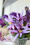 Pink and purple flowers Stock Images