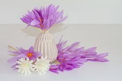Pink, purple flowers, fresh, natural crocus bouquet on a vase Royalty Free Stock Photo