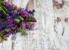 Pink and purple flowers Stock Photography