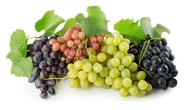 Pink, purple and green grapes isolated on the white background.  Royalty Free Stock Image