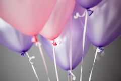pink and purple helium balloons background, varieties shade of pink royalty free stock photo