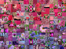 PINK PURPLE patchwork photomontage background Stock Photos