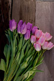 Pink and purple spring flowers Royalty Free Stock Photography