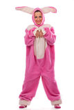 Pink rabbit Stock Photos