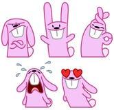 Pink rabbit set Stock Images