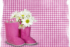 Pink Rain Boots Stock Images