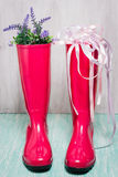 Pink rain boots with spring flowers royalty free stock photos