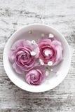Pink ranunculus Stock Photos