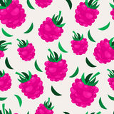 Pink raspberry seamless pattern. Vector nature background Royalty Free Stock Photos