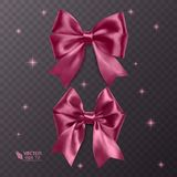 Pink, realistic vector bows on a transparent background Royalty Free Stock Photography