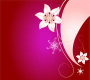 Pink and red abstract floral background Royalty Free Stock Photo