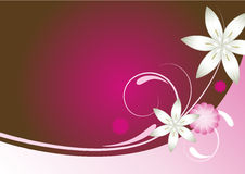 Pink red and brown abstract floral background royalty free stock photography
