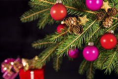 Pink and red christmas balls on a branch Royalty Free Stock Images