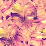 Pink Red Exotic pattern. Watercolor tropic leaves. Palm and Hibiscus jungle seamless pattern. Spring hawaiian watercolor background. Palms, monsteras, hibiscus Royalty Free Stock Images