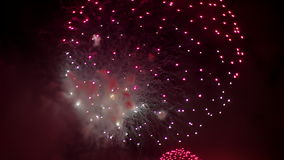 Pink Red Fireworks stock video footage