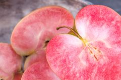 Pink and red fleshed apples on a dark background. Apples with pink flesh. Pink and red fleshed apples on a gray background stock photos