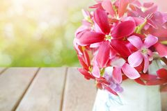 Pink and red flower in glass wooden table, empty space for text in soft pastel tone of bokeh Royalty Free Stock Photo