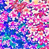 Pink and red flowers on abstract background royalty free stock photos