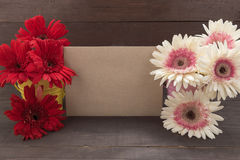 Pink and red gerbera flowers are in the flowerpots, on the woode Royalty Free Stock Images