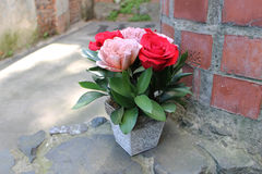Pink and red roses in a decorative pot. Royalty Free Stock Images