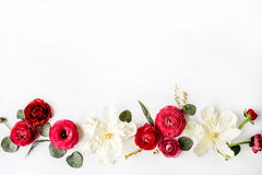Pink and red roses or ranunculus Royalty Free Stock Photos