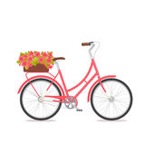 Pink retro bicycle with bouquet in floral box on trunk for wedding, congatulation banner, invite, card Stock Image