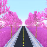 Pink road. Stock Image