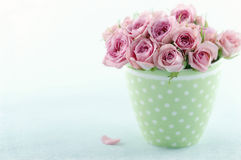 Pink romantic bouquet of roses Stock Images