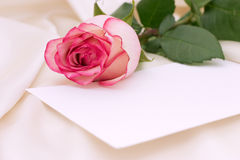 Pink rose. And blank letter Royalty Free Stock Photo