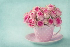 Pink rose. S in a cup on blue background Royalty Free Stock Photo