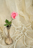 Pink rose in an antique silver vase with pearls Stock Photos