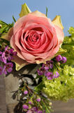 Pink rose in an arrangement Royalty Free Stock Images