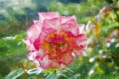 Pink rose art Royalty Free Stock Images