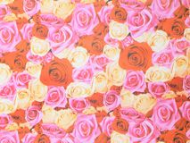 Pink rose background Stock Image