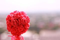Pink rose background. Pink rose in valentine background Royalty Free Stock Photography