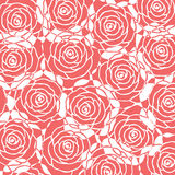Pink rose background Royalty Free Stock Image