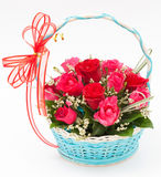 Pink rose in basket. On white background Royalty Free Stock Photos