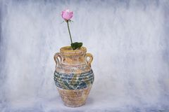 Pink rose in big ceramic vase on light grungy background. Stock Photo
