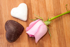 Pink rose with black and white chocolate hearts Stock Image